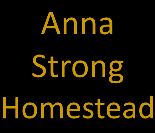 link to Anna Strong Homestead clue